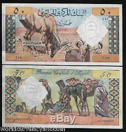 Algérie 50 Dinars P124 1964 Chameau Unc Grand Rare France Monnaie Facture Billet