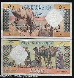 Algérie 50 Dinars P-124 1964 Camel Unc Large Rare France Currency Bill Note