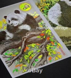 Chine Shi Jia 2019 Pmdc Zhuang Panda Monnaie Art Gravure Test Remarque Unc 2 Pcs